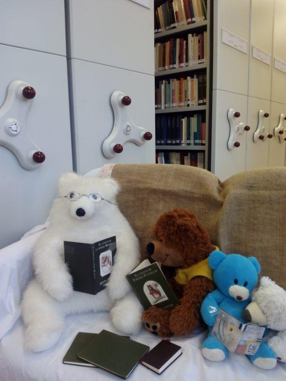 Leyendo en la Biblioteca