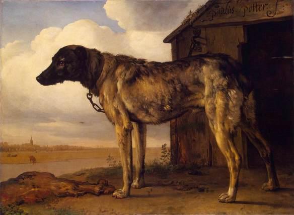 Perro lobo (Wolf-hound) de Paulus Potter